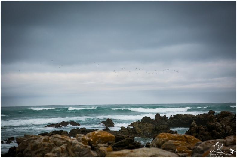 Cape Agulhus-24